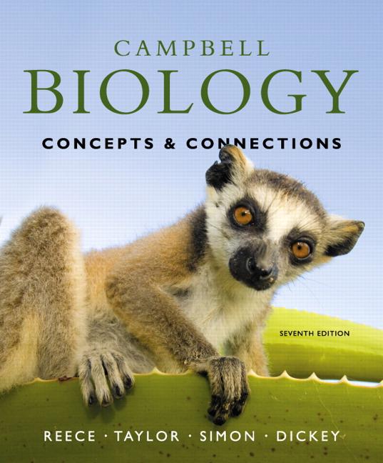 A pro-choice lemur...